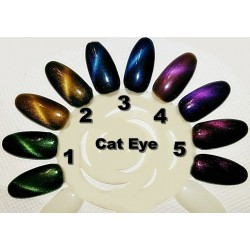 gel polish cat eye 01